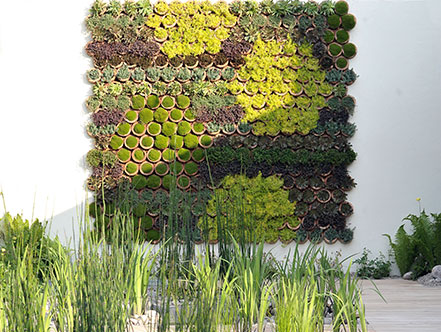 The low-tech living wall, made by planting drought-tolerant succulent into recycled clay pipes
